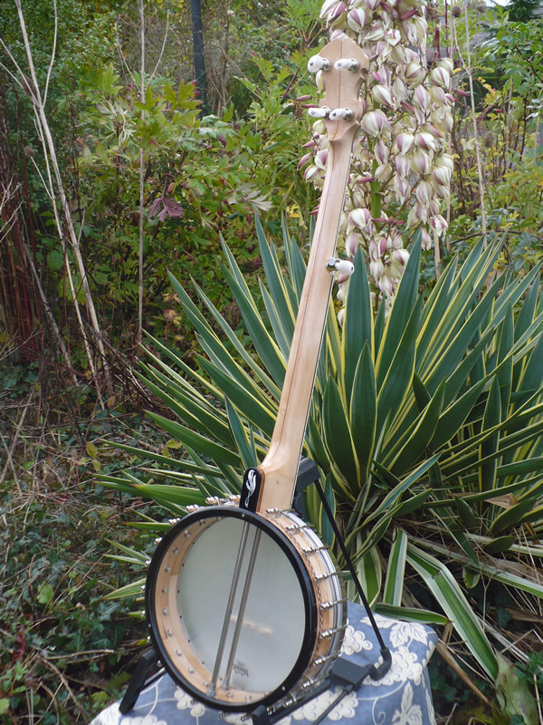 griffin banjos in stock